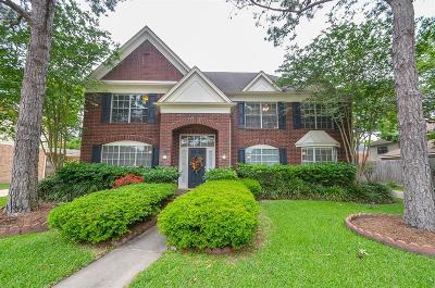 Houston Single Family Home For Sale: 3119 Plum Knoll Court