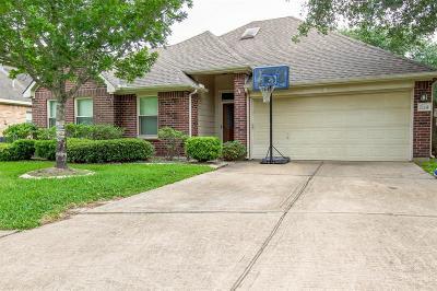 Houston Single Family Home For Sale: 17235 Stonebridge Trail