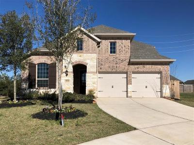 Fulshear Single Family Home For Sale: 30326 Iris Circle Court