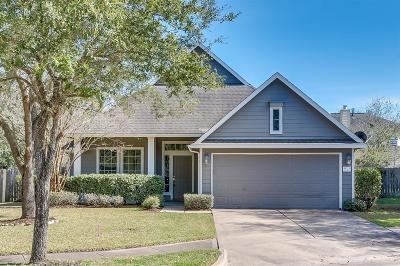 Fort Bend County Single Family Home For Sale: 1003 Green Spring Court