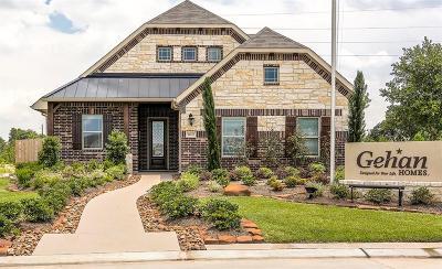 Houston Single Family Home For Sale: 16111 Brookside Willow Lane