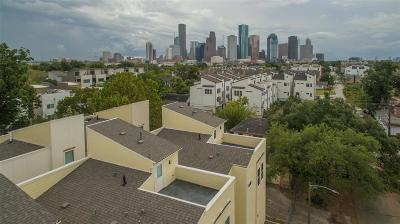 Houston Single Family Home For Sale: 1625 Shearn Street