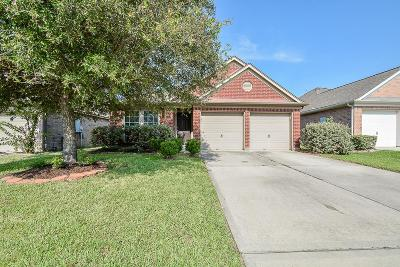 Tomball Single Family Home For Sale: 19003 Bluestone Hollow Lane