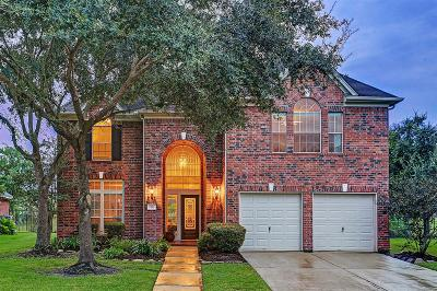 Katy Single Family Home For Sale: 1211 Pelican Hill Court