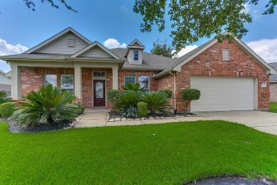 Tomball Single Family Home For Sale: 18627 Summercliff