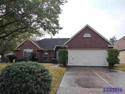 Pearland Single Family Home For Sale: 3438 N Peach Hollow Circle