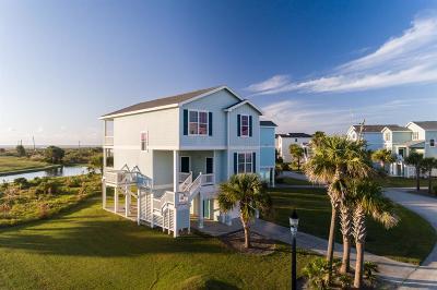 Galveston Single Family Home For Sale: 4142 King Rail Circle