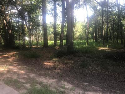 Tomball Residential Lots & Land For Sale: 1 Maple Glen Drive