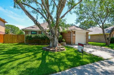 Baytown Single Family Home For Sale: 4722 Black Rock Street