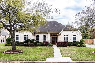 Houston Single Family Home For Sale: 14319 Mindy Park Lane
