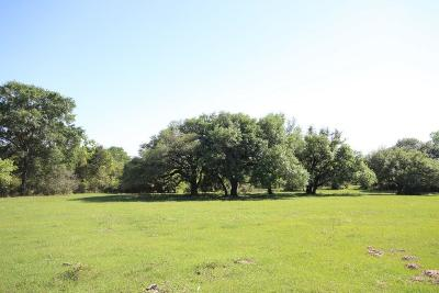 Cat Spring Farm & Ranch For Sale: 17482 Koeppens Trail