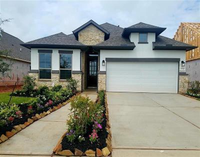 Missouri City Single Family Home For Sale: 2531 Amethyst Isle Lane