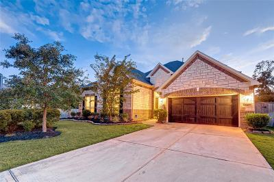 Montgomery Single Family Home For Sale: 138 Hunter Hollow Drive