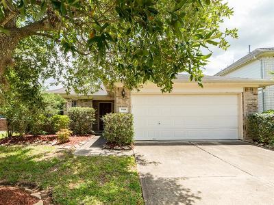 Houston Single Family Home For Sale: 9314 Rustler Ridge Lane