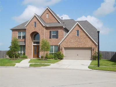 Katy Single Family Home For Sale: 29016 Concan Crossing Ct