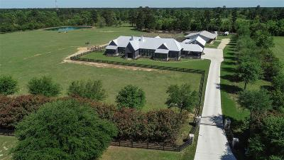Magnolia Single Family Home For Sale: 323 High Meadow Ranch Drive