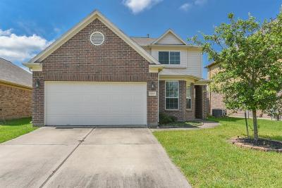 Tomball Single Family Home For Sale: 11019 Chestnut Path Way