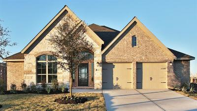 Pearland Single Family Home For Sale: 13609 Aspen Ridge Lane