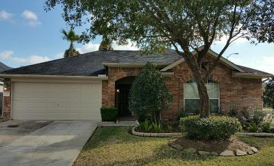Fort Bend County Single Family Home For Sale: 4902 Lake Daniel Court