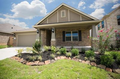 Single Family Home For Sale: 2623 Bright Rock Lane