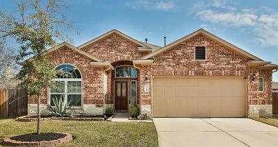 Tomball Single Family Home For Sale: 12006 Rockridge Falls Drive