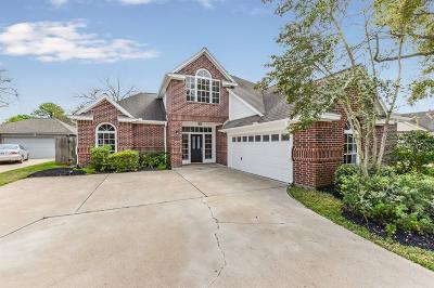 Sugar Land Single Family Home For Sale: 118 Mill Trail Drive