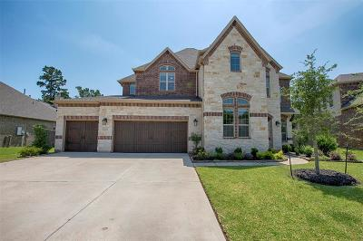 Single Family Home For Sale: 23114 Creek Park Drive
