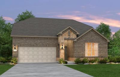 Katy Single Family Home For Sale: 23811 Mesia Meadow Lane