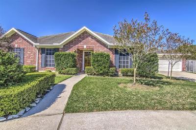 Pasadena Single Family Home For Sale: 3626 Turtle Cove Drive