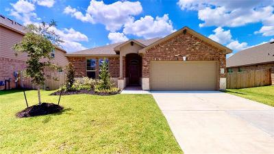 Houston Single Family Home For Sale: 18207 Octavio Frias Trail