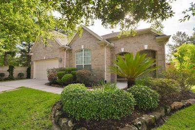 Porter Single Family Home For Sale: 25401 Vinechase Drive