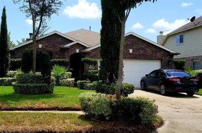 Texas City Single Family Home For Sale: 8009 Silver Oak Drive
