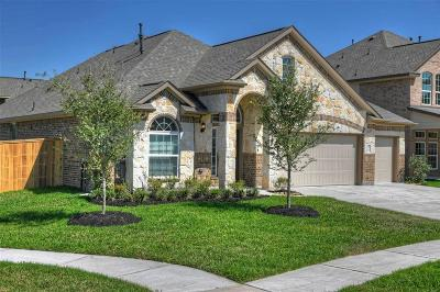 Fort Bend County Single Family Home For Sale: 7707 Mesquite Hill