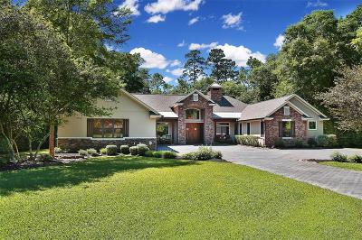 Tomball Single Family Home For Sale: 22903 Timberlake Creek Road