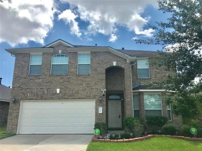 Houston Single Family Home For Sale: 21323 Clover Crest Drive