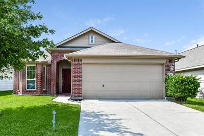 Katy Single Family Home For Sale: 19507 Dry Canyon Court