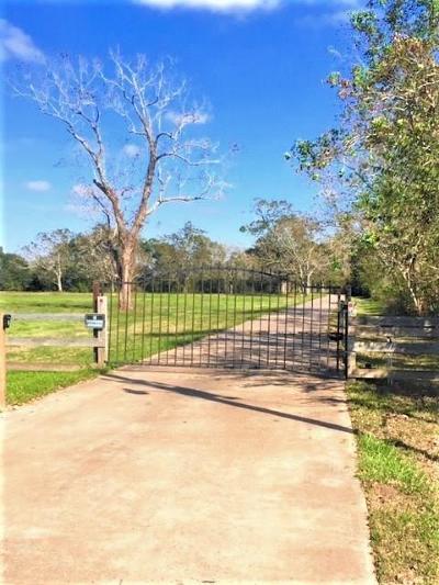 Brazoria County Single Family Home For Sale: 3171 County Road 309