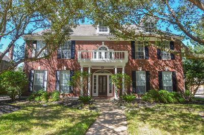 Houston Single Family Home For Sale: 19706 Ivory Brook Drive