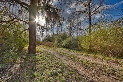 Bellville Farm & Ranch For Sale: 3183 Mill Creek Road
