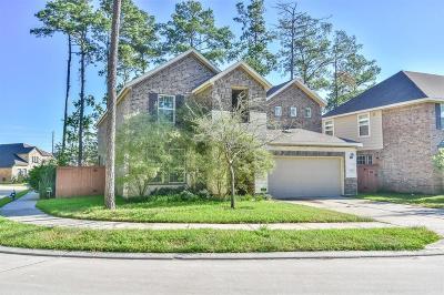 Houston Single Family Home For Sale: 13505 Palo Lake Lane