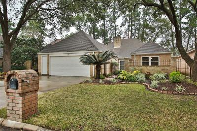 Harris County Single Family Home For Sale: 14006 Jupiter Hills Drive