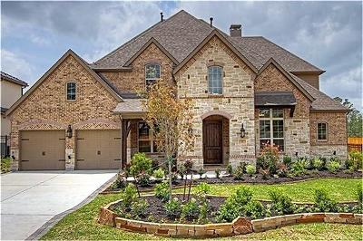 Tomball Single Family Home For Sale: 31 Clairhill Drive