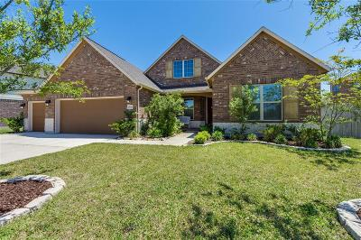 Pearland Single Family Home For Sale: 9616 Live Creek Lane