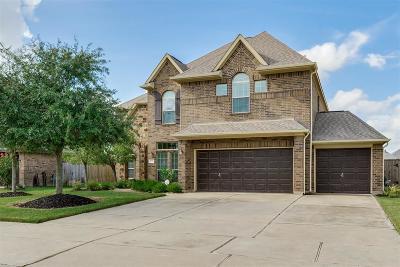 Fulshear Single Family Home For Sale: 3710 Walker Falls Lane