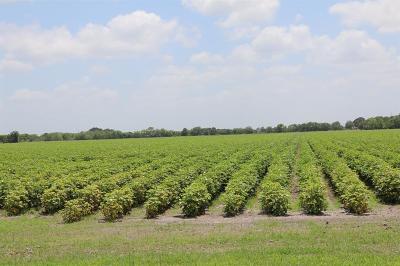 Fort Bend County Farm & Ranch For Sale: Jeske Road