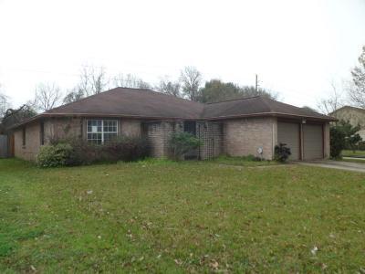 Houston Single Family Home For Sale: 3502 Cheaney Drive