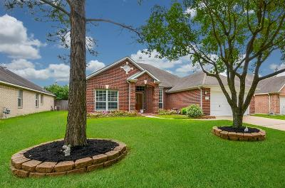 Houston Single Family Home For Sale: 17318 Danbury Bridge Drive