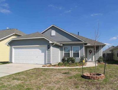 Houston Single Family Home For Sale: 9314 Fillmont Lane