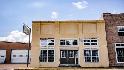 Washington County Single Family Home For Sale: 213 W Main Street
