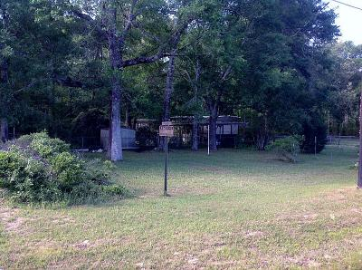 New Caney Single Family Home For Sale: 25978 Fm 1485 Road